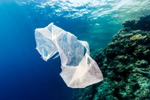 Single-Use Plastics Are #NotTheAnswer by Jonathan Griffin